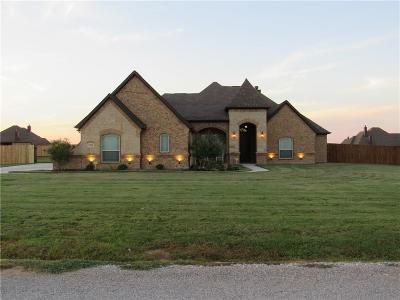 Springtown Single Family Home For Sale: 1028 Jesse James Lane