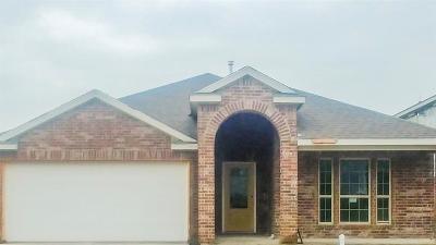 Melissa Single Family Home For Sale: 3819 Bastrop Street