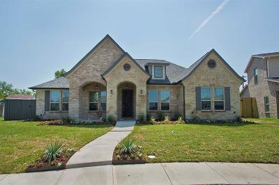 Rowlett Single Family Home For Sale: 9204 Willard Street