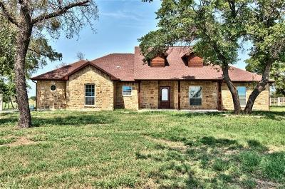 Palo Pinto Farm & Ranch For Sale: 1010 Brown Road