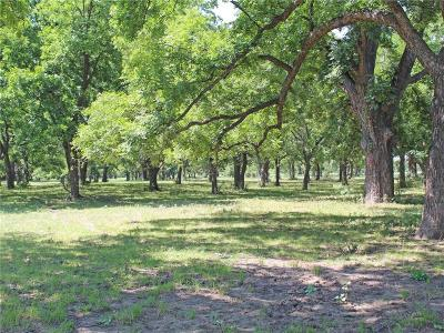 Santo Farm & Ranch For Sale: 3958 N Fm Road 129