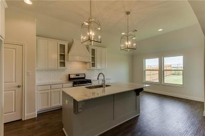 Aledo Single Family Home For Sale: 656 Lookout Point Avenue