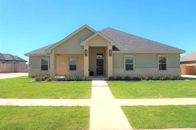 Abilene Single Family Home For Sale: 725 Mossy Oak Drive
