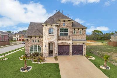 Plano Single Family Home For Sale: 5001 Albatross Drive