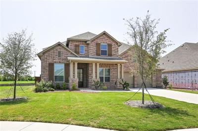 Prosper Single Family Home For Sale: 231 Lake Trail Lane