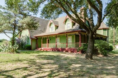 Springtown Single Family Home For Sale: 531 Lynch Bend Road