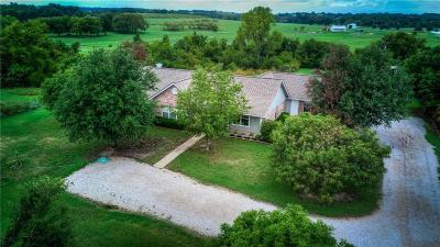 Springtown Single Family Home For Sale: 3690 Holbrook Road