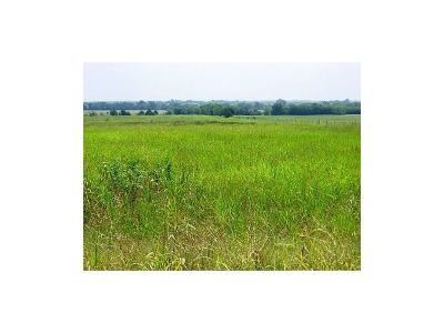 Farmersville Farm & Ranch For Sale: 1997 Fm 547