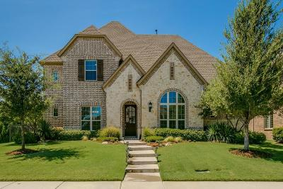 Frisco Single Family Home For Sale: 7411 Rockyford Drive
