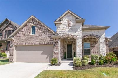 McKinney Single Family Home For Sale: 1020 Llano Falls Drive