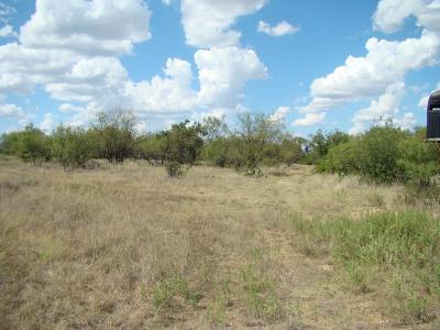 Farm & Ranch For Sale: 370 Ac Cr 315