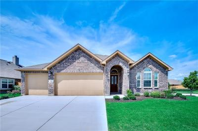 Prosper Single Family Home For Sale: 1345 Palestine Drive