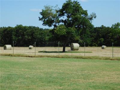 Weatherford Farm & Ranch For Sale: 1949 Crystal Lane