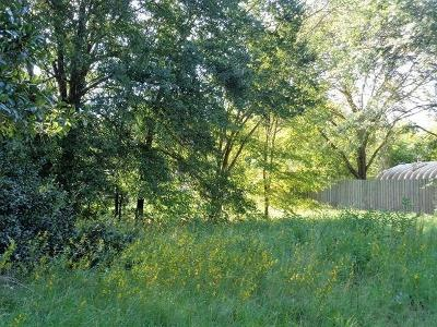 Residential Lots & Land For Sale: 00 Hiawatha Drive