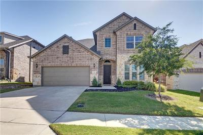 Lewisville Single Family Home For Sale: 2712 Point Vista Drive