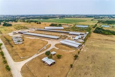Dublin Farm & Ranch For Sale: 4065 County Road 309