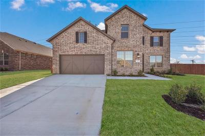 Dallas, Fort Worth Single Family Home For Sale: 14721 Spitfire Trail