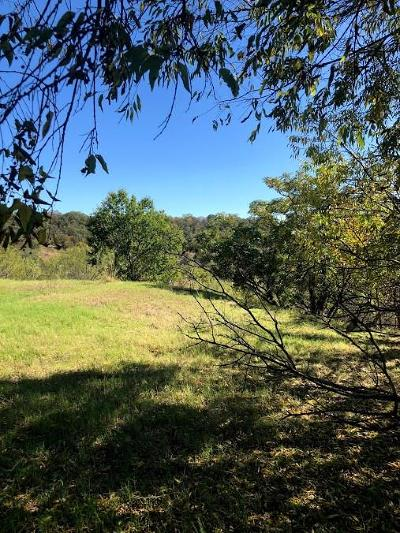 Mineral Wells Residential Lots & Land For Sale: NE 6th Avenue