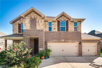 Fort Worth Single Family Home For Sale: 8232 Western Lakes Drive