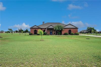 Gunter Single Family Home For Sale: 756 Peggy Lane