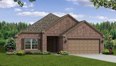 Melissa Single Family Home For Sale: 2915 Chestnut Lane
