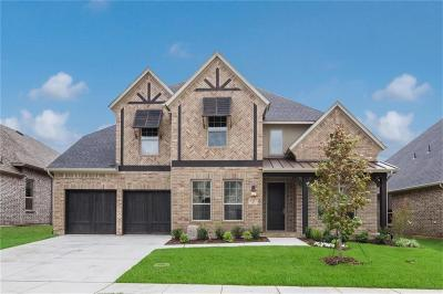 Flower Mound Single Family Home For Sale: 6367 Prairie Brush Trail