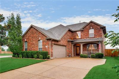 Grand Prairie Single Family Home For Sale: 2703 Waterway Drive