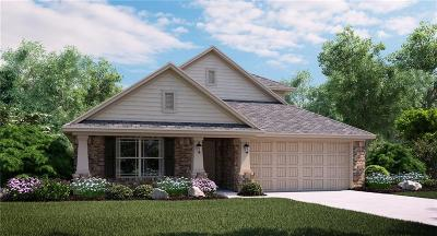 Fort Worth Single Family Home For Sale: 9232 Bronze Meadow Drive