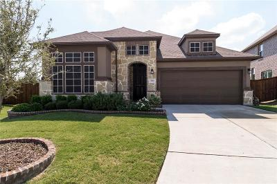 Mckinney Single Family Home For Sale: 705 Rio Concho Trail