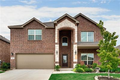 Little Elm Single Family Home For Sale: 1117 Lake Meadow Lane