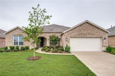 Frisco Single Family Home For Sale: 2464 Luna Vista Lane
