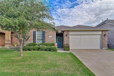 Arlington Single Family Home For Sale: 807 Bastrop Drive