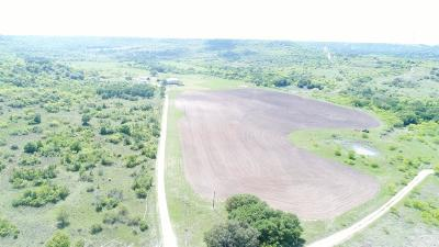 Stephenville Farm & Ranch For Sale: 3609 County Road 112