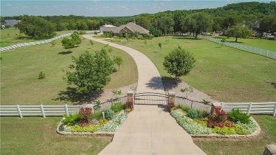 Single Family Home For Sale: 193 Palomino Court