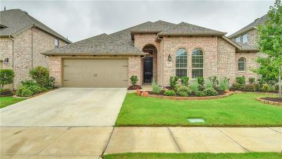 Little Elm Single Family Home For Sale: 9916 Trinity Drive