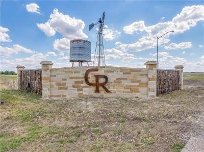 Weatherford Residential Lots & Land For Sale: 1065 Pilgrim Trail