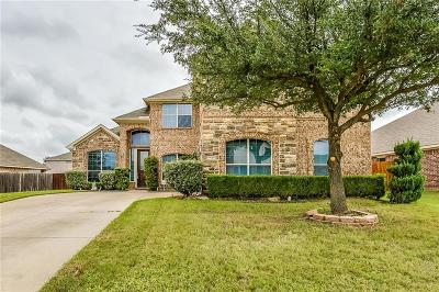 Grand Prairie Single Family Home For Sale: 5420 Goliad Trail