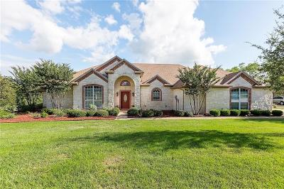 Parker County Single Family Home For Sale: 3430 Cliff View Loop