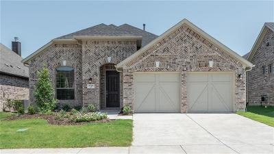 Little Elm Single Family Home For Sale: 5136 Shallow Pond Drive