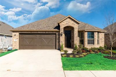 McKinney TX Single Family Home For Sale: $319,000