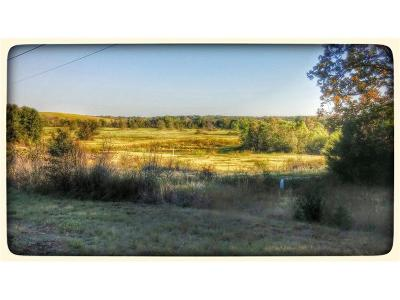 Edgewood Farm & Ranch For Sale: 000c Hwy 19