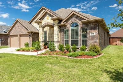 Single Family Home For Sale: 2932 Trail Lake Drive