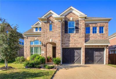 Plano Single Family Home For Sale: 3617 Oakstone Drive