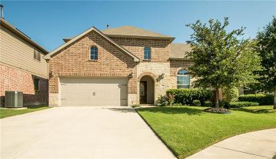 Fort Worth Single Family Home For Sale: 4213 Doe Creek Trail