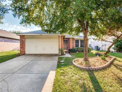 Denton Single Family Home For Sale: 8105 Winding Stream Lane