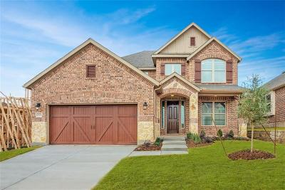 Lewisville Single Family Home For Sale: 1321 Prairie Lake Court