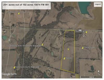 Blue Ridge Farm & Ranch For Sale: 15674 Fm 981 #25