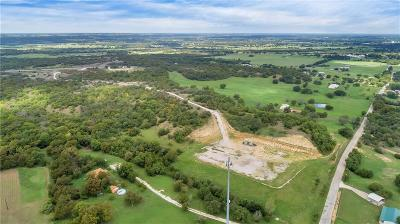 Springtown Farm & Ranch For Sale: 360 Sandlin Lane