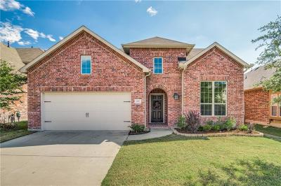 Little Elm TX Single Family Home For Sale: $265,000