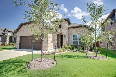 Rockwall Single Family Home For Sale: 790 Mountcastle Drive